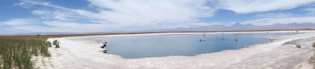 Laguna Cejar San Pedro de Atacama