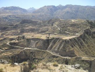 Der Colca-Canyon