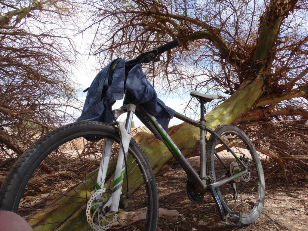 laguna cejar - fahrrad san pedro de atacama