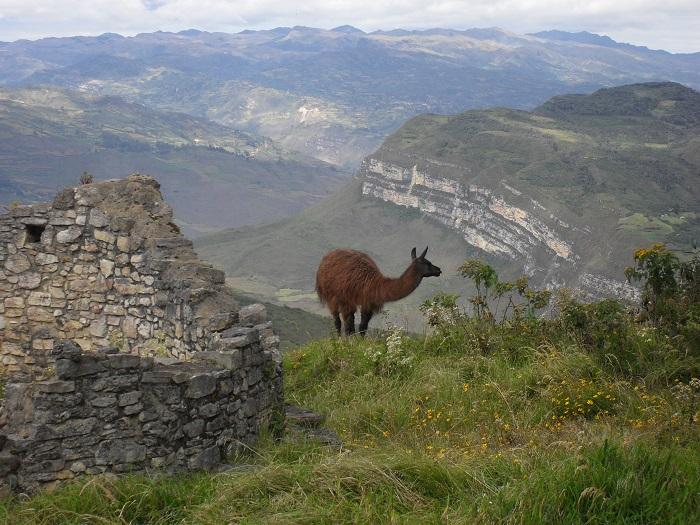 Peru Ruinen Stätten Kuelap Norden Chachapoyas