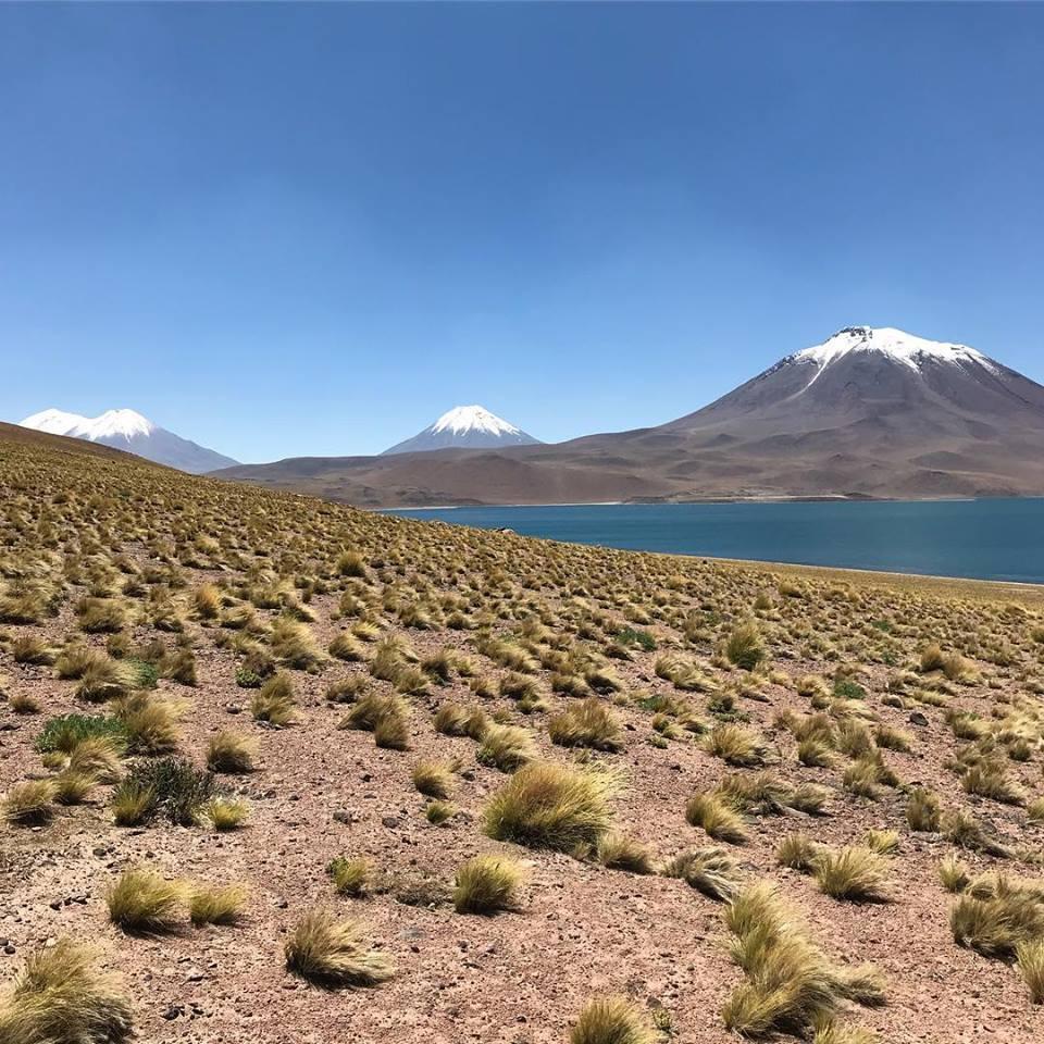 Laguna Miscanti Vulkan Miscanti Schnee Chile San Pedro de Atacama