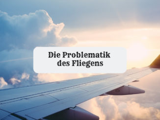 fliegen co2 emissionen problematik