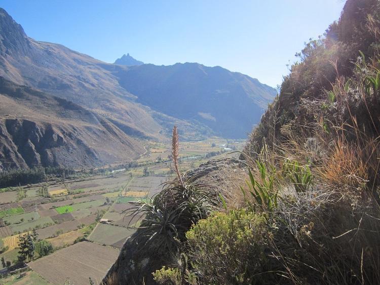 Peru Heiliges Tal der Inka Festung Pisac