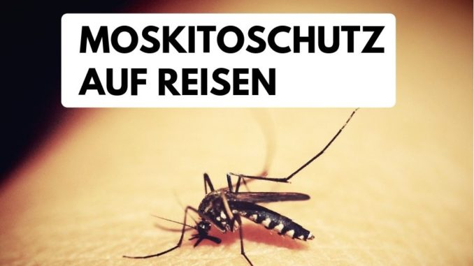 reisen mückenschutz